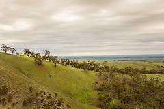 Clare Valley-1 (Rogier van de Laar) Tags: clare valley spring gully south australia landscape x100s fujifilm