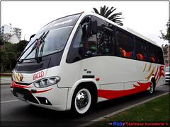 Carolina del Valle.- (||Buses-de-chile|| E. Navarrete) Tags: marcopolo senior g6 mercedesbenz lo915 carolinadelvalle