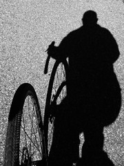 Alone at the wheel | 268/366 (emrold) Tags: 366the2016edition 3662016 day268366 24sep16 shadow iphoneography iphone6s bw lightroom bicycling riding sooc ottawa cumberland road wheel bike bicycle