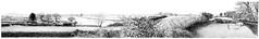 Panorama Montage. (Vivienne Coleman) Tags: panorama montage landscape fernbank cumbria criffel views