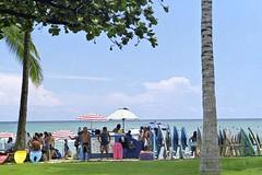 Surf and Boogie Board Rentals, Waikiki Beach (AntyDiluvian) Tags: hawaii 2001 30thanniversary oahu honolulu beach waikiki surfboard boogieboard rental vendor palmtrees