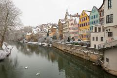 Neckarfront Tübingen (stefanheymann) Tags: schnee winter neckar d800 tübingen 1635 neckarfront hölderlinturm platanenallee