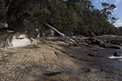 The South Coast Track - South Cape Rivulet