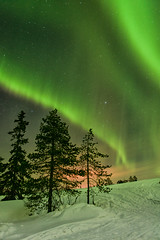 St Patrick's Day in Finland (Kristin Repsher) Tags: longexposure finland nikon rovaniemi aurora stpatricksday northernlights auroraborealis cme solarstorm finnishlapland northernfinland d700 katkavaara