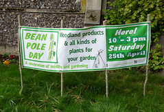 Bean Pole Day, 25th April 2015 (karenblakeman) Tags: uk april caversham 2015 cavershamcourtgardens beanpoleday