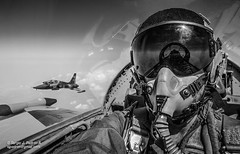 (sjpadron) Tags: blancoynegro airplane nikon venezuela aircraft aviation formation pilot trainer canadair formacion entrenador aviacion northrop piloto biplaza nikond700 ambv northropvf5b vf5b
