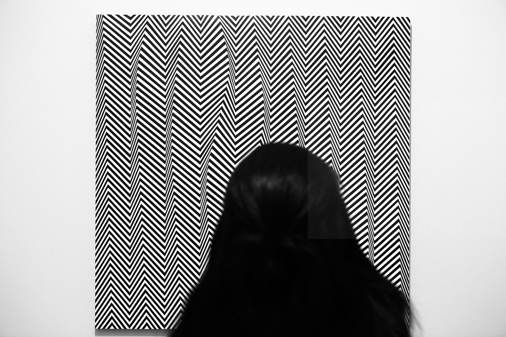The World's Best Photos of bridgetriley and museum
