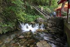 IMG_2812 (Elias Chung) Tags: taiwan tours hualien tarokonationalpark canon500d tokina1116mm centralcrosslslandhighway