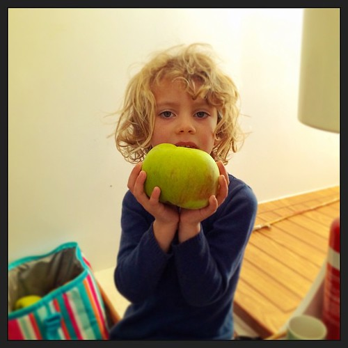 084/365 • DB and a Bramley almost bigger than her head • #084_2015 #applesofinstagram #bramley #heirloom #southgippsland #homegrown #4yo #apples