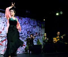 KUge7 (Instituto Cervantes de Tokio) Tags: music art dance concert gallery arte dancing guitar live danza concierto guitarra galeria livemusic exhibition msica baile flamenco vivo institutocervantes directo  exposicin     flamencodancing guitarraflamenca  exhibicin flamencoguitar  msicaenvivo  msicaendirecto baileflamenco