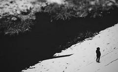 Pensive (Jon-F, themachine) Tags: trip travel winter vacation people blackandwhite bw snow monochrome japan asian asia sightseeing olympus monochromatic gero  trips nippon japo traveling grayscale oriental orient fareast   gifu   bnw nihon omd hida greyscale  japn 2016   nocolor  m43  mft    gifuken     geroonsen mirrorless   micro43 microfourthirds  ft xapn jonfu   mirrorlesscamera snapseed   em5ii em5markii