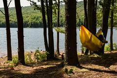 Do Not Disturb! (SaltyDogPhoto) Tags: hammock hammocklife sleeping relaxing relax outdoors outside nature pinetrees shoreline lake lebanonwaterreservoir pinegrove pa pennsylvania schuylkillcounty explore exploring peaceful shade summer forest woods trees nikon nikonphotography nikond7200 nikkor nikkor1680mmf284eedvr saltydogphoto