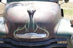 Chevrolet 3100 pinstripe (bballchico) Tags: chevrolet suburban santamaria carshow pinstripe 3100 cruisinnationals westcoastkustomscruisinnationals resurrectionvintageautoparts