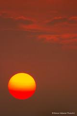 Sunset (Bianca Valkenier PhotoArt) Tags: lowsun sun nature sunset cloudy sky eveninglight evening zon avondzon laagstaandezon wolken clouds red bewolking colorful beautiful colored