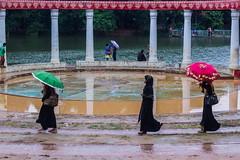 Dhanmondi Lake (Jubair Bin Iqbal) Tags: streetphotography streetstylephotography streetphotographycolor street photographer bangladeshiphotographer bangladesh bangladeshiculture