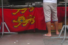 Comme un fait exprs... (mistigree) Tags: toulouse drapeau normandie lion blason march jambe