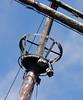 crows nest (foxtail_1) Tags: lagrandehermine thebigweasel jordanharbour shipwreck crowsnest
