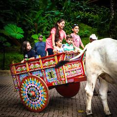 DSC_0808 (errolviquez) Tags: familia hijos paseos costa rica bela ja naturaleza catarata sobrinos