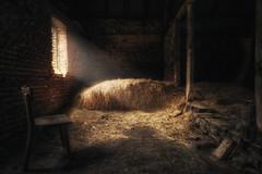 Anno 1909 (-SebsTian-) Tags: old light shadow urbex window sony a58 sigma 1020