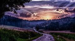 sundown - gleich ist sie weg! (Florian Grundstein) Tags: sunset sundown sonnenuntergang hdr photoshop nikon d7100 sigma ex 14 50mm street trees perspective deep sunray light shadow grundstein florian epic