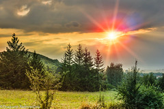 Summer landscape and sunset (radebg) Tags: horizon spring landscape sunset woods pasture beauty light lawn sun summer growth forest outdoors green yellow herb grass freedom cloudscape plant season nature color blue farm nonurban rural star weather red land field scene idyllic scenery tree bright cloud day sunrise sky sunbeam organic meadow environment sunlight