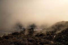 Losing Sight (toekneestuck) Tags: ocean karl marincounty fog northerncalifornia coast cliff route1