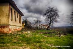 Village 1 (`ARroWCoLT) Tags: sky house tree bird chicken clouds dark village nest rooster hen hdr