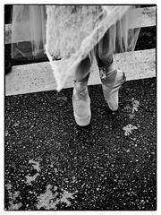 En Pointe (La Chachalaca Fotografa) Tags: street ballet halloween festival oregon ballerina shoes toes dancing dancer parade vida slippers vie enpointe