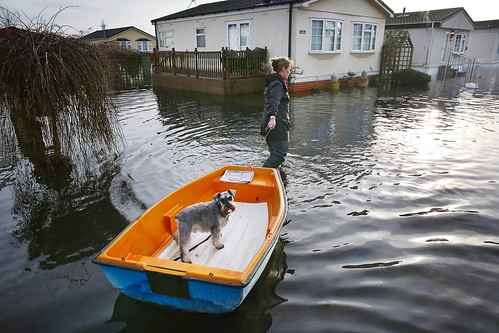 Reaching home to today will be challenging. #rainy #march #boat #dog #flood