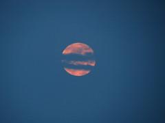 Moon A-Rising (deu49097) Tags: sky moon night spring