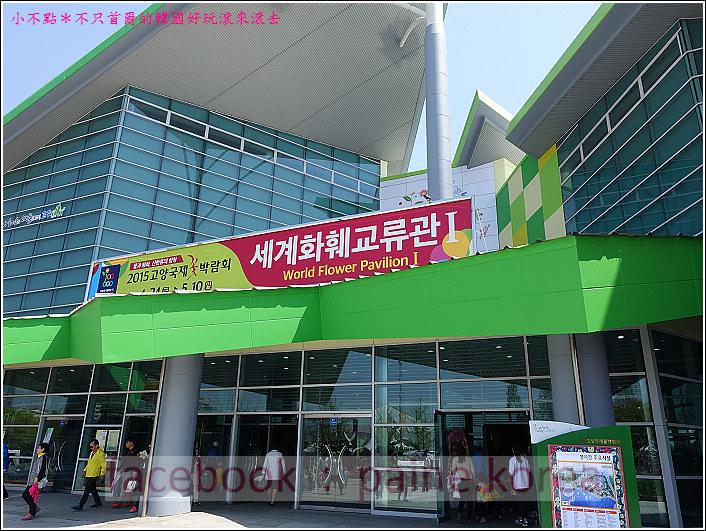 高陽國際花卉博覽 (45).JPG
