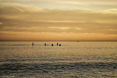 Still waiting (Joe Hengel) Tags: california sunset sailboat waiting pacificocean socal surfers southerncalifornia orangecounty danapoint nowaves calmocean