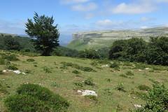 Campo del Moscadero (Begoa Fernndez) Tags: haya pagoa pastos beech pasture larreak verano uda summer mountain mendiak montaa limestone caliza kareharria sky zerua cielo nubes clouds hodeiak
