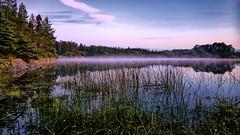 Storavatnet, Norway (Vest der ute) Tags: g7x norway rogaland ryksund waterscape landscape reflections mirror clouds trees fav25 fav200