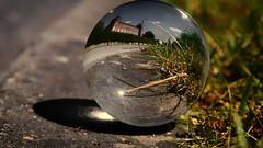 Dans ma boule de cristal (Yasmine Hens) Tags: europa flickr belgium crystal ngc chateau cristal namur hens yasmine wallonie bouledecristal world100f iamflickr flickrunitedaward olympusm45mmf18 panasonicdmcgx8 hensyasmine