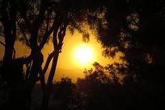 IMG_0047 (john blopus) Tags: naxos   hellas greece  island cyclades  sunset
