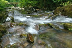 Watersmeet National Trust July 2016 006 (Doyleecart Photography) Tags: longexposure water river green forest bridge rock flow doyleecart canon5dmkiii