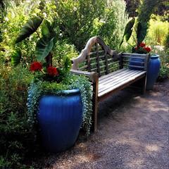 bench and planters (johngpt) Tags: appleiphone5 lowylensblankofilmnoflash abqbotanicgardens bench flowers hipstamatic planters albuquerque newmexico unitedstates benchmonday hbm