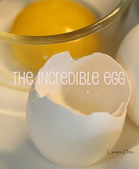 The Incredible Egg (Baking is my Zen) Tags: food egg eggyolk crackedegg carmenortiz theincredibleegg sometimessavory