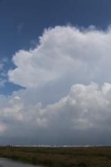 Tormenta en la Bahia de Cdiz (Jos Rambaud) Tags: storm primavera rain clouds spring lluvia andaluca cloudy stormy nubes storms cdiz cloudscape cumulonimbus cumulonimbos cumulos