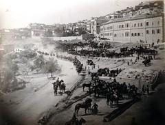 Watering horses in Jerusalem - 1917 (Aussie~mobs) Tags: army military jerusalem australia soldiers ww1 troops lighthorse