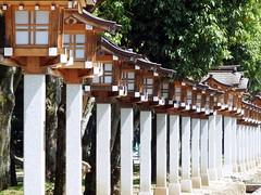 Kashihara Jing Shrine  (: : Ys [waiz] : :) Tags: japan shrine  fujifilm s1 nara    kashihara finepixs1
