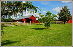 Country Living (Jerry Jaynes) Tags: tree grass clouds barn rural fence virginia farm lexington country va countrylife nikkor1685vr lexingtonvai