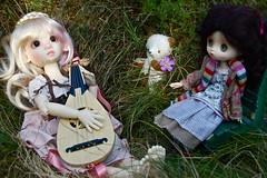 Sunny Afternoon in the Meadow (Emily1957) Tags: dolls doll toys toy kayewiggs dewdropteddybears jerryberry teddybear bismark tertia elodie bjd obitsu mandolin light naturallight nikond40 nikon kitlens resin
