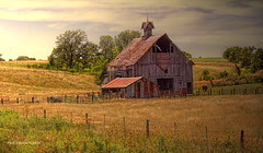 Simply Picturesque! (jackalope22) Tags: barn cow rustic cupola mow hay tones