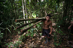 Guilherme.Gnipper-0269 (guilherme gnipper) Tags: picodaneblina yaripo yanomami expedio expedition cume montanha mountain wild rainforest amazonas amazonia amazon brazil indigenous indigena people
