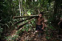 Guilherme.Gnipper-0269 (guilherme gnipper) Tags: picodaneblina yaripo yanomami expedio expedition cume montanha mountain wild rainforest amazonas amazonia amazon brazil indigenous indigena people