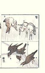 Top – little egret; Bottom – common hill myna (Japanese Flower and Bird Art) Tags: bird art japan japanese book little hill picture hokusai common egret woodblock katsushika ardeidae religiosa myna ukiyo egretta garzetta sturnidae gracula readercollection