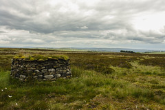 KeighleyMoor_24 (atkiteach) Tags: rural pen walking bradford sheep moors fold westyorkshire dogwalking moorland penfold keighley keighleymoor hiddenbradford hiddenbradfordyorkshire