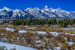 DSC00538--Jackson Hole Valley, Wyoming (Lance & Cromwell back from a Road Trip) Tags: nationalpark roadtrip 2016 grandtetons